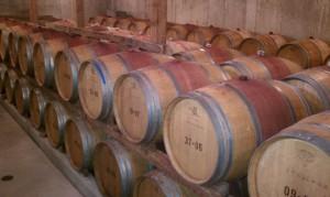 Plenty of wine to go around