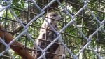 quogue wildlife refuge